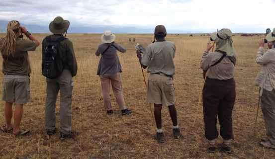 Binoculars areup spying 2 warthogs.