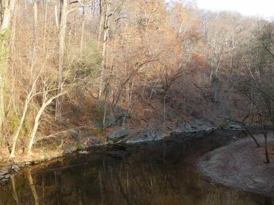 While the leaves had faded from their most brilliant along the Wissahickon Creek, they still offered a lovely sight in the last days of Fall.