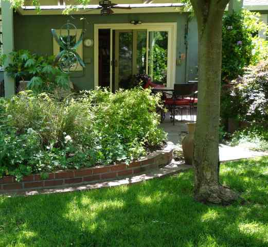 Over many years, Jeannie created curved planting beds for shade and sun; planned open spaces and patios; worked with existing trees and over the years planted new trees.