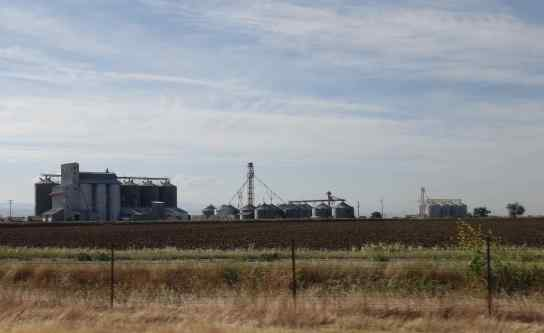 The largest grain silos we've ever seen dotted the highway. Our favorite brand of rice, Lundgren's, is grown nearby.