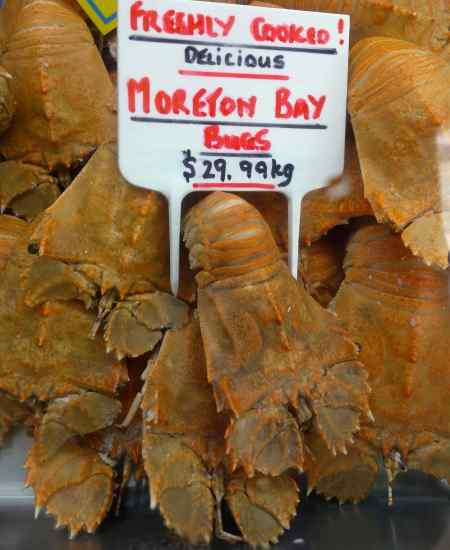 We stayed in an apartment in Cairns, Australia. We found a surprising number of foods new to us. Moreton Bay bugs?