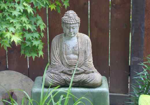 Buddha quietly greeted us, sitting in the shade of the tree not far from the door.