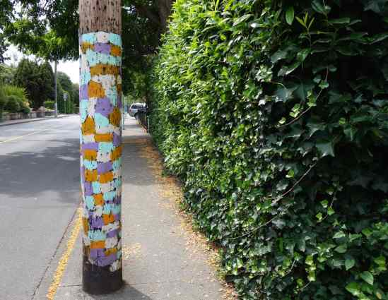 Utility poles in Victoria are usually blocking part of the sidewalk. The lovely painted pole safely guided us past.