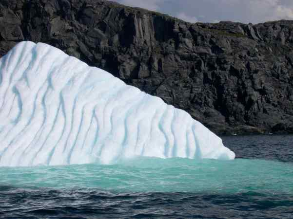 We took a small boat, past icebergs, to Quirpon Island, Newfoundland where we stayed.