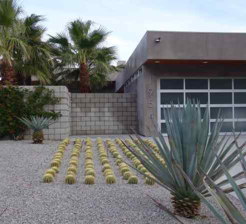 Every time we pass this house we admire the cactus designed landscaping.