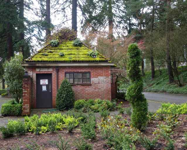 Have you ever seen public restrooms in a park so opulently landscaped? (The location is Forest Park in Portland.)