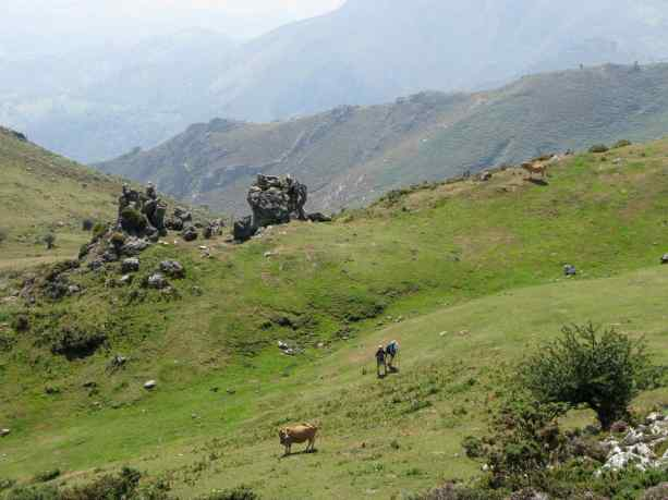 Asturias, Spain. 2010