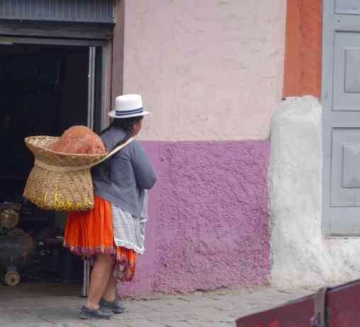 The hat, embroidered skirt, long braids, and carrying a load on your back captures perfectly the look of many older women we see on the street.