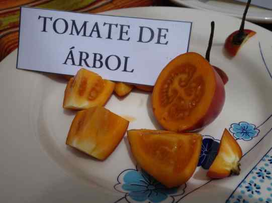 At Yanapuma Spanish School, we learned that the tomaté de arbol is a fruit and makes a delicious juice. They were pretty shocked anyone would use it in a soup. (Hey! That soup was good!)