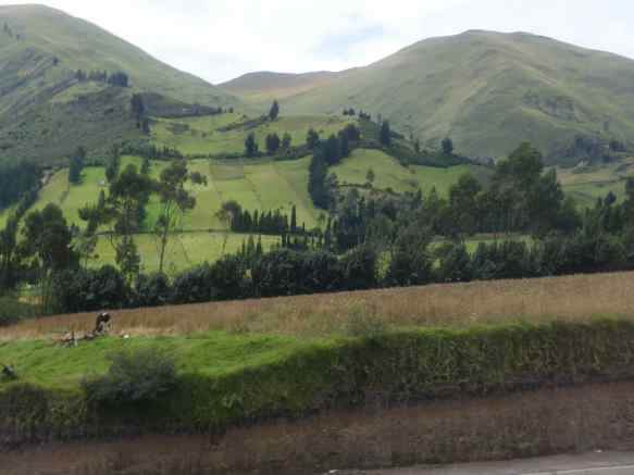 I heard someone on the bus refer to these scenes as Alpen, and it did look like the foothills of the Alps, but the correct term would be Andean.
