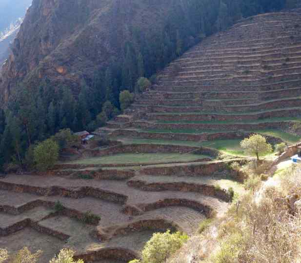 After a few hours walking, we came upon one of the highest Inca terraces we'd yet seen.