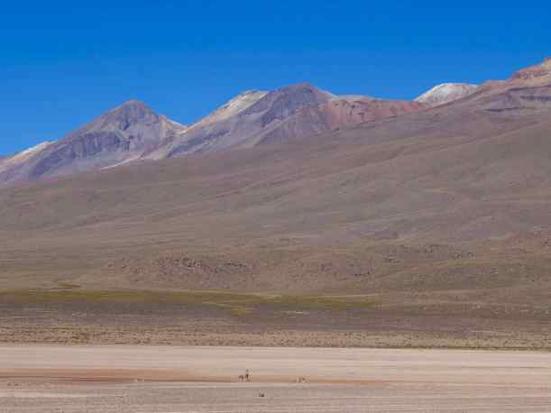 Our first stop offered us great mountain views and vicuna grazing in the distance.