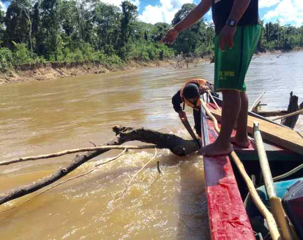 The rivers appeared challenging to navigate: shallow water in the dry season, tree branches caught in the rocks, fast-moving channels. One day, against a powerful current, Aurelio took out a saw, balanced himself on a tree branch in the river, and sawed off a branch that blocked our passage. We held our breaths until he was finished and back in the canoe.