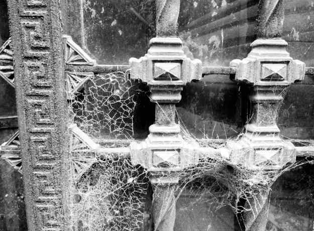 """We also saw another form of """"curtain"""" –cobwebs - blocking our view inside."""