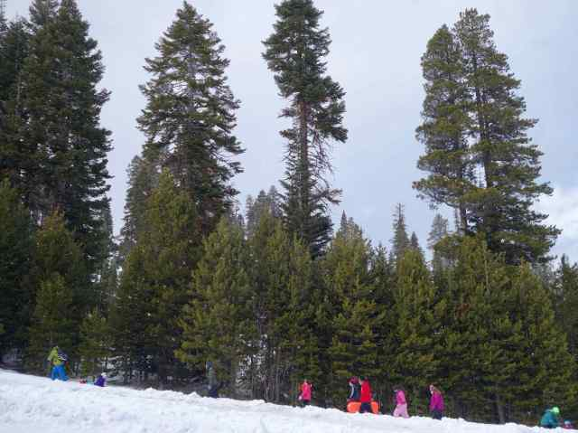 It was true that the deep green of the trees contrasted with the snow, but clearly the bright winter outfits everyone else was wearing added an amazing, bright pop to our photos.