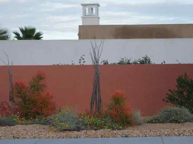 We've always admired the wonderful colors of buildings and walls in the desert. Now, with so many plantings lush with the heavy rains, the brick-red walls provided a great backdrop to the orange hued-red flowers.