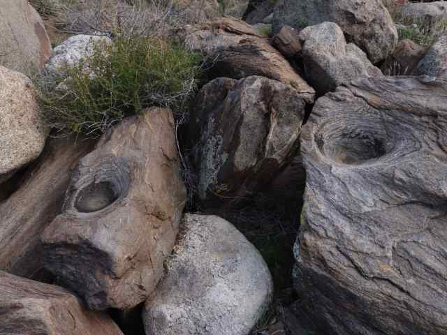 He showed us these two morteros (bedrock mortar sites) where food was ground by Kumeyaay or Cahuilla Indians. A quick look and our friends discovered at least ten more morteros nearby.
